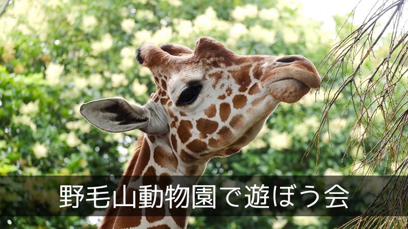 野毛山動物園で遊ぼう会