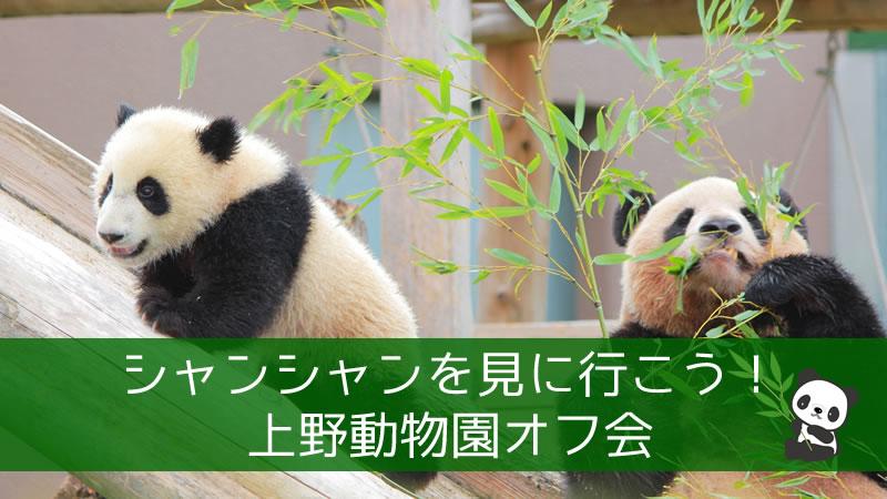 シャンシャンを見に行こう!上野動物園オフ会