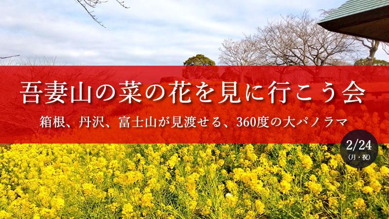 吾妻山の菜の花を見に行こう会